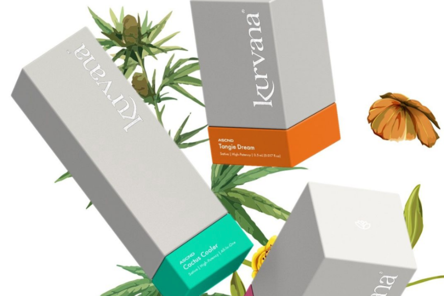 kurvana artist tree dispensary